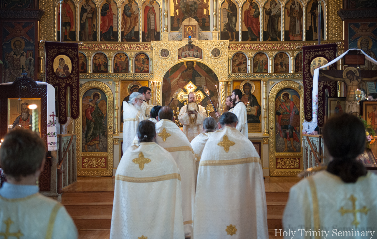 What is the rhythm of the Orthodox life?